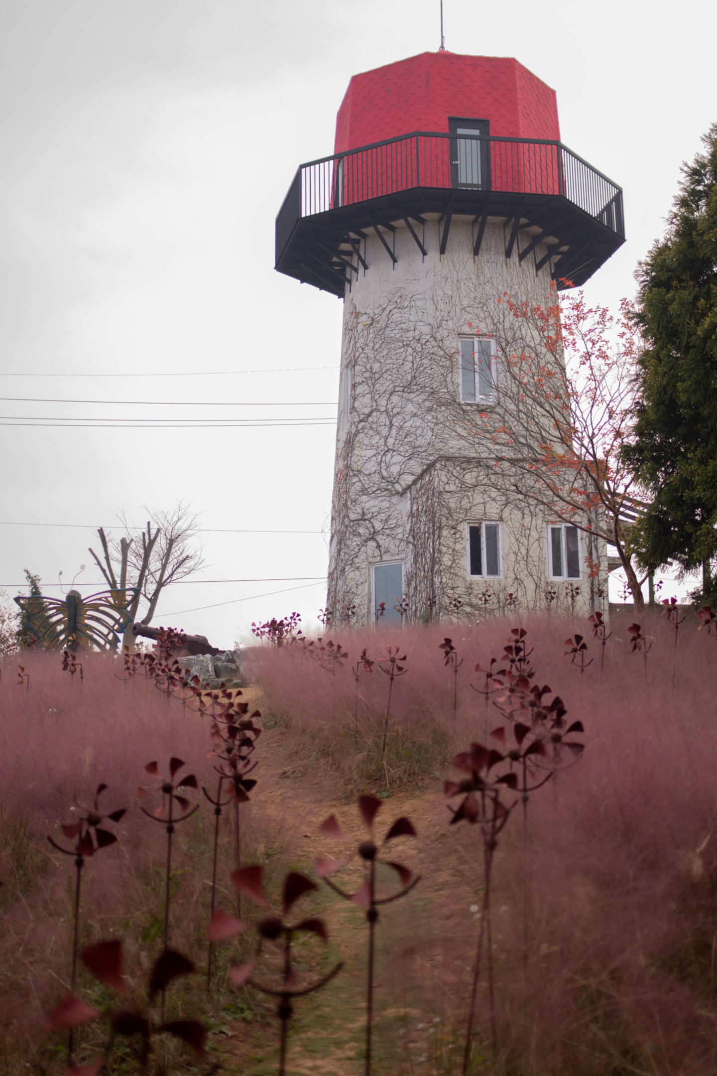 pink muhly bushes in front of an old observation building at farm kamille